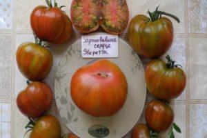 Описание томата Заржавевшее сердце Эверетта и агротехника выращивания сорта