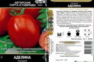 Описание низкорослого томата Аделина и выращивание в открытом грунте