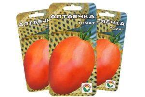 Описание томата Алтаечка, выращивание и борьба с заболеваниями