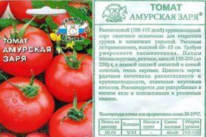 Особенности томата Амурская заря, описание и характеристика сорта