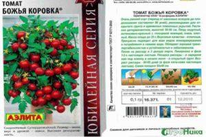 Описание раннеспелого томата Божья коровка, правила выращивания и уход