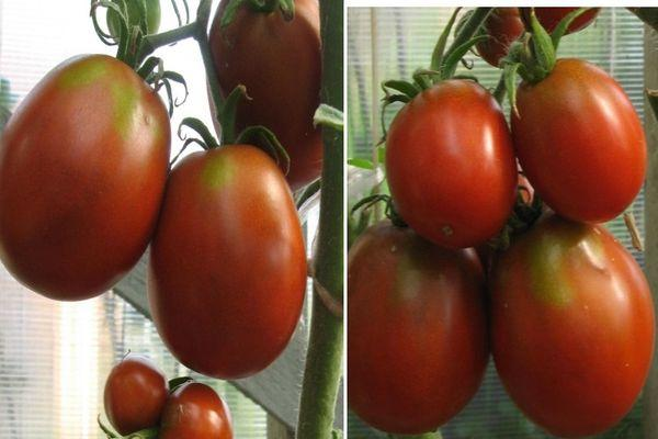Кисти с томатами