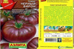 Описание томата Черный барон и рекомендации по выращиванию сорта