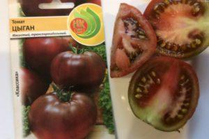 Характеристика томата Цыган и описание вкусовых качеств помидора
