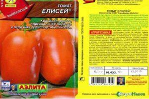 Описание раннеспелого томата Елисей и выращивание рассады в пленочных укрытиях