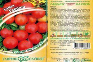 Характеристика российского томата Гаврош и особенности выращивания сорта