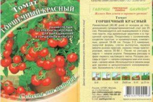 Характеристика супердетерминантного томата Горшечный красный и способ выращивания сорта