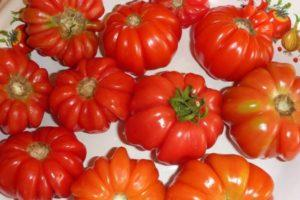 Описание томата Грибное лукошко и правила выращивания сорта в теплице