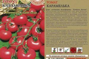 Описание росийского томата Карамель F1, выращивание на участке и разновидности сорта