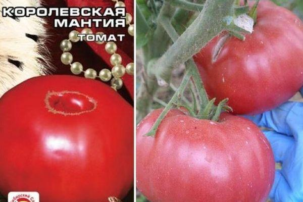 Семена помидора