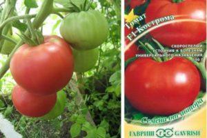 Описание гибридного томата Кострома и советы дачников по выращиванию сорта