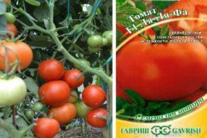 Описание томата Ля ля фа и агротехника выращивания гибридного сорта