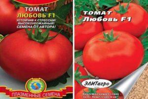 Описание томата Любовь f1 и советы по выращиванию сорта своими руками