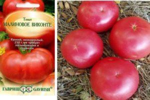Характеристика томата Малиновое виконте, описание плодов и борьба с вредителями