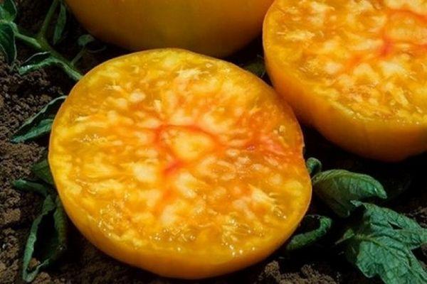 Мякоть томата
