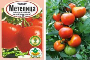 Описание селекционного томата Метелица и советы по выращиванию сорта