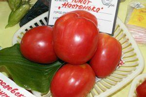 Описание раннеспелого томата Настенька и агротехника выращивания растения