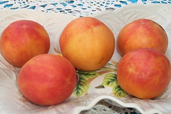Персиковые томаты