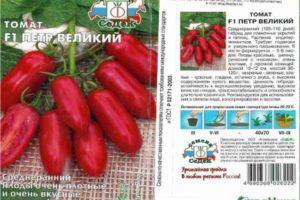 Описание томата Петр Великий F1, технические данные и правила выращивания