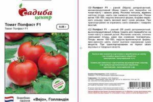 Описание гибридного томата Полфаст и выращивание сорта рассадным способом