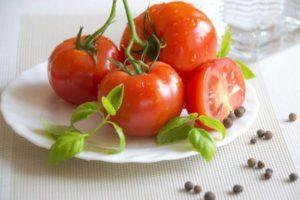 Описание томата Шеди Леди и рекомендации по выращиванию гибридного сорта