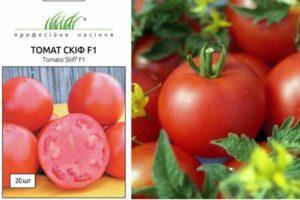 Описание гибридного сорта томата Скиф, процесс выращивания и уход