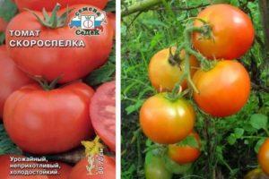 Описание селекционного томата Скороспелка и советы по выращиванию рассады