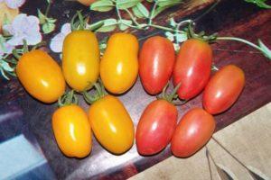 Описание томата Сливка медовая и выращивание гибрида