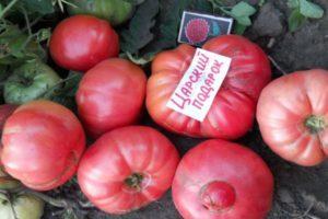 Описание крупноплодного томата Царский подарок и правила выращивания сорта в тепличных условиях