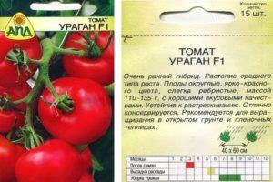 Описание томата Ураган f1 и агротехника выращивания гибрида