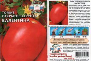 Описание томата Валентина, правила выращивания и отзывы фермеров