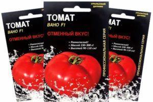 Описание крупноплодных томатов Вано, выращивание и уход за гибридным сортом