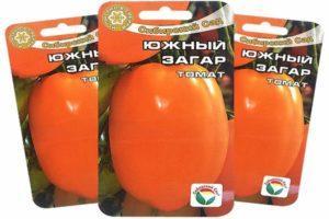 Описание оранжевых томатов Южный загар и выращивание сорта из рассады