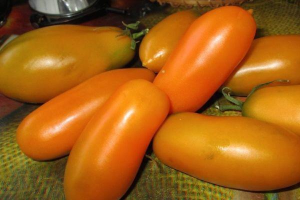 Динные помидоры