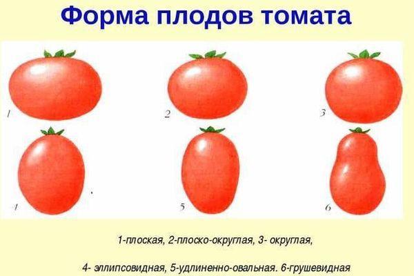 Формы томатов