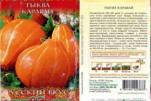 Характеристика раннеспелой тыквы Каравай и правила выращивания