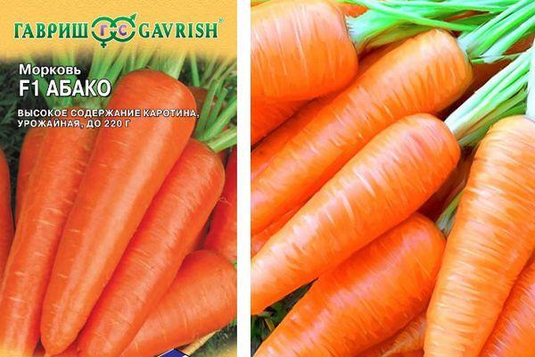 Семена и морковь