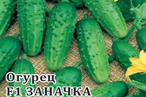 Огурцы Заначка