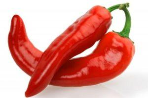 Описание сорта перца Рамиро, выращивание и борьба с вредителями