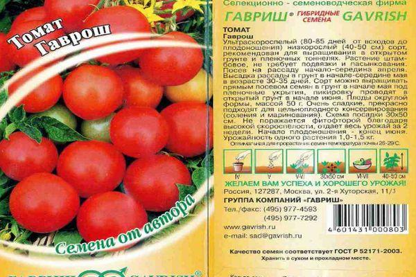 томат Гаврош