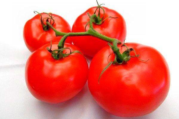 Ветка с томатами