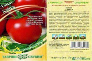 Описание раннеспелого томата Алиса и правила выращивания в парниках