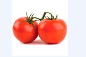 Описание гибридного томата Багира, выращивание и борьба с вредителями