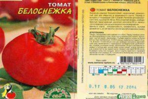 Характеристика сорта томата Белоснежка, выращивание и уход за кустами