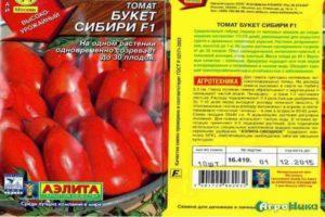 Описание детерминантного томата Букет Сибири, выращивание и урожайность
