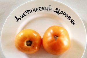 Описание томата Диетический здоровяк и агротехника культивирования сорта