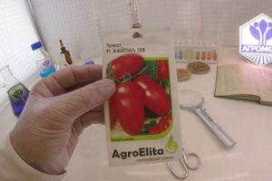 Описание гибридного томата Хайпил 108 f1, правила выращивания и защита от вредителей