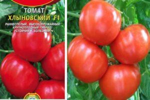 Характеристика томата Хлыновский F1, особенности плодов и выращивание сорта