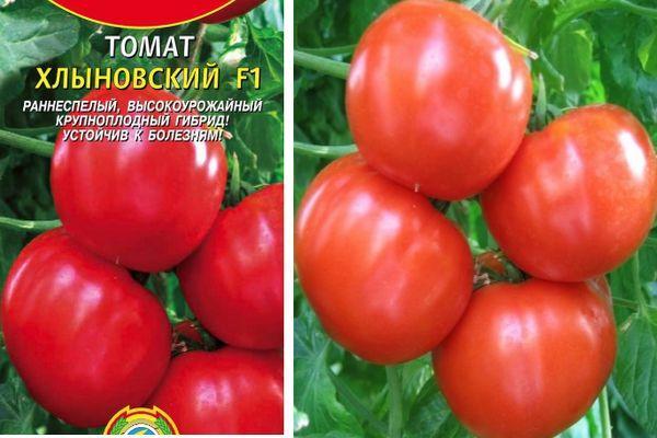 Характеристика томата Хлыновский F1, особенности плодов и выращивание