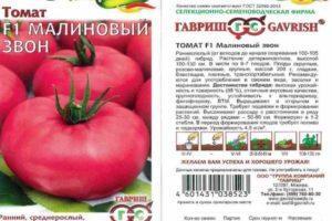 Описание томата Малиновый Звон и особенности выращивания сорта